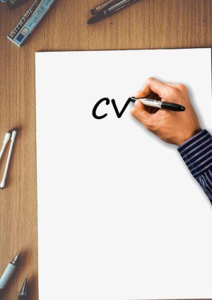 Curriculum Vitae, Cv, Programme D'Études, Vitae